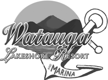 lakeshore-bw-logo